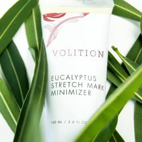 Eucalyptus Stretch Mark Minimizer and plants