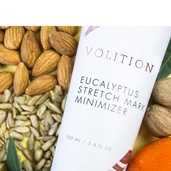 Desktop innovator collage eucalyptus